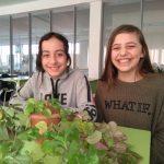 Մարտի 26-ից ապրիլի 1-ը կրթահամալիրի դպրոցներում «Ուսումնական արձակուրդ» նախագիծ